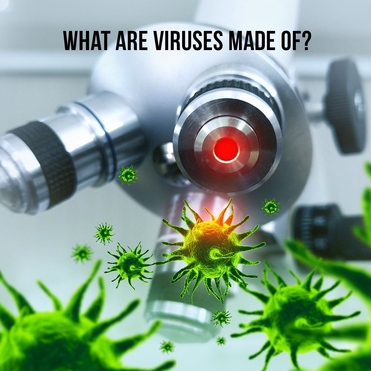 What Are Viruses Made Of?